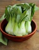 Bok choy (китайская капуста) Стоковое Изображение