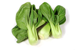 Bok Choy 1 Royalty Free Stock Photo