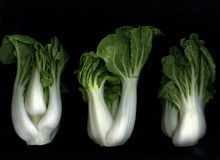 Bok Choy Images stock