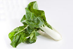 Bok Choy Foto de Stock Royalty Free