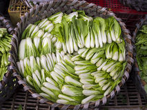Bok Choy cabbage in a basket Stock Photo