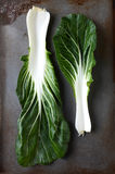 Bok Choy Leaves Stock Images