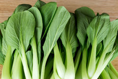Bok Choy Leaves on Wooden Table Stock Image