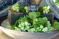 Bok Choy on sale at a farmers market. Bok Choy, a nutritious Asian vegetable, on sale in a bowl at a farmers market Royalty Free Stock Image