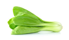 Bok choy vegetable isolated on the white background Stock Photos