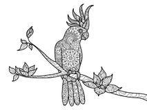 Bok för färgläggning för kakaduapapegoja för vuxen människavektor Fotografering för Bildbyråer