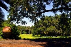Bok-Gärten in Florida Stockbild