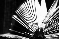 Bok i svartvitt Royaltyfri Foto