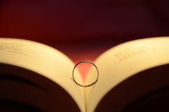 Bok och cirklar Royaltyfri Fotografi