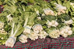 Bok orgánico Choy en el mercado de los granjeros Fotografía de archivo libre de regalías