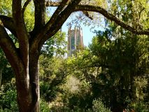 Bok Tower Royalty Free Stock Images