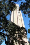 Bok tower. Lake Wales Florida royalty free stock photos