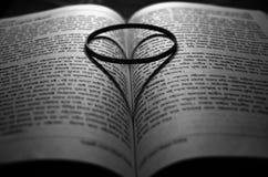 Boka av förälskelse Fotografering för Bildbyråer