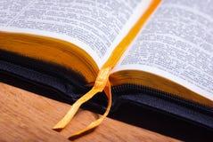 Boka bibeln royaltyfria bilder