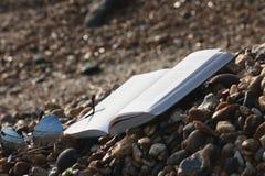 Boka med solglasögon som ligger på stranden Royaltyfri Fotografi
