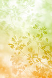 Bokah Leaves Background stock illustration