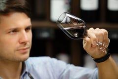 Bokal czerwone wino na tle, męski sommelier docenia napój zdjęcie royalty free