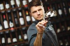 Bokal do vinho tinto no fundo, sommelier masculino que aprecia a bebida Foto de Stock Royalty Free