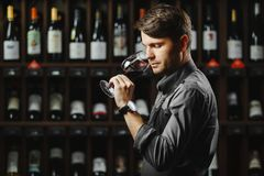 Bokal do vinho tinto no fundo, sommelier masculino que aprecia a bebida Fotos de Stock Royalty Free