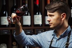 Bokal of red wine on background, male sommelier appreciating drink. Bokal of red wine on background of male sommelier appreciating color, quality, flavor and Royalty Free Stock Photography
