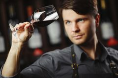 Bokal of red wine on background, male sommelier appreciating drink. Bokal of red wine on background of male sommelier appreciating color, quality, flavor and Royalty Free Stock Images