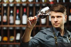 Bokal of red wine on background, male sommelier appreciating drink. Bokal of red wine on background of male sommelier appreciating color, quality, flavor and Stock Photo