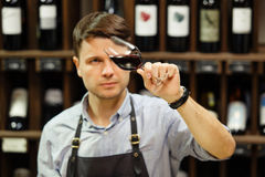 Bokal of red wine on background, male sommelier appreciating drink. Bokal of red wine on background of male sommelier appreciating color, quality, flavor and Royalty Free Stock Photo