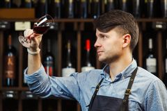 Bokal of red wine on background, male sommelier appreciating drink. Bokal of red wine on background of male sommelier appreciating color, quality, flavor and Royalty Free Stock Photos