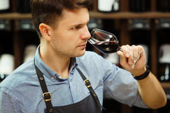 Bokal of red wine on background, male sommelier appreciating drink Stock Photo