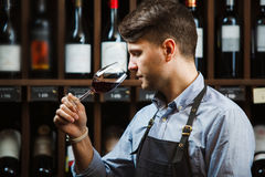 Bokal of red wine on background, male sommelier appreciating drink Stock Images
