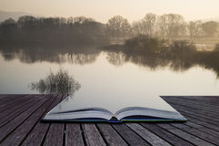 Bokbegreppslandskap av sjön i mist med solglöd på soluppgång Arkivfoton