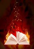 bokbrandmagi royaltyfri illustrationer