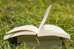 Bokbunt i gräset Arkivfoton