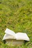 Bokbunt i gräset Arkivbild