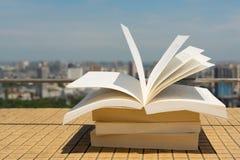Bokbunt på ett tak Royaltyfri Bild