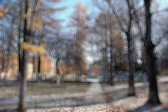BOkeh都市风景公园秋天 库存照片
