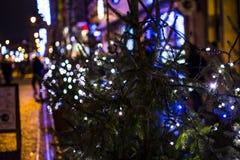 Bokeh праздника освещает iasi 2017 стоковое фото