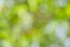 Bokeh abstract Stock Photo