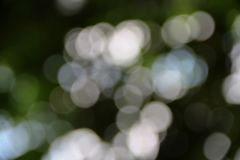 Bokeh abstract beautiful nature warm background with copy space.  Stock Images