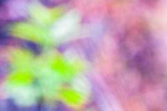 Bokeh abstracto del fondo Fotografía de archivo libre de regalías