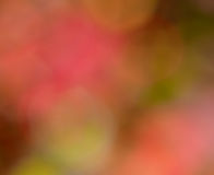 Bokeh autumn background. Abstract colorful autumn background with soft bokeh lights Stock Images