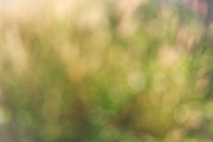 Bokeh background Stock Photo