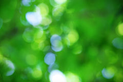 Bokeh background. Royalty Free Stock Photography
