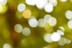 Bokeh background. Glittering bokeh circular white on green background Stock Image