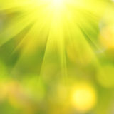 Bokeh background in spring Stock Photo