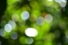 Bokeh backgrounds. Stunning bokeh and blurry backgrounds stock photography