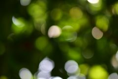 Bokeh backgrounds Royalty Free Stock Photography