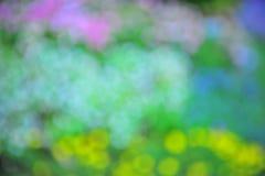 Bokeh-Blumen Stockbild