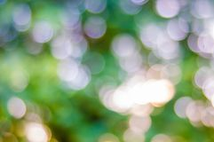 Bokeh and blur background Royalty Free Stock Photos