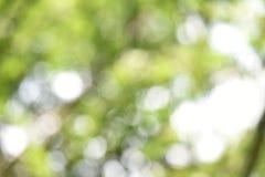 Bokeh and blur Stock Photos